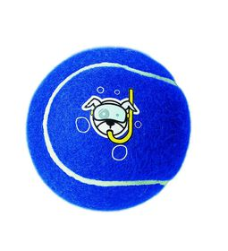 Rogz Dog Molecule Proton Ball Large 100mm - Blue