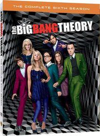Big Bang Theory Season 6 (DVD)