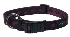 Rogz Extra-Large Alpinist Everest Dog Collar - 25mm Purple