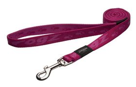 Rogz Large Alpinist K2 Fixed Dog Lead - 20mm Pink