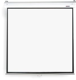 Parrot Pulldown Projector Screen - 1870 x 1050mm