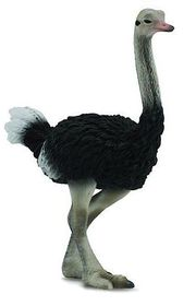 CollectA Ostrich - Large
