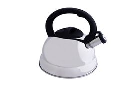 Eetrite Stainless Steel Stove Top Kettle
