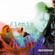 Alanis Morissette - Jagged Little Pill (DVD)