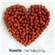 Roxette - The Ballad Hits (CD)
