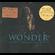 Stevie Wonder - Wonder Years - The Close Of (CD)