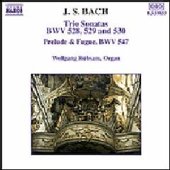 Wolfgang Rubsam - Trio Sonatas 4 - 6 / Prelude & Fugue 547 (CD)