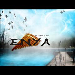 Panpipes Plays Enya - Various Artists (CD)