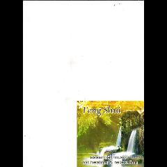 Feng Shui - Various Artists (CD)