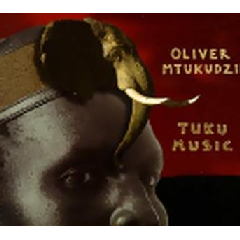 Oliver Mtukudzi - Tuku Music (CD)