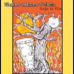 Tlokwe Sehume & Medu - Naga Ya Fsa (CD)