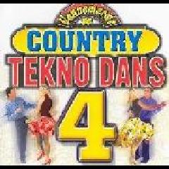 Vannemerwe Se Country Tekno Dans - Vannemerwe Se Country Tekno Dans vol 4 (CD)