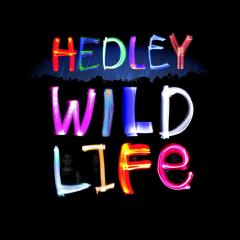 Hedley - Wild Life (CD)