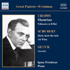 Friedman, Ignaz - Complete Recordings - Vol.3 (CD)