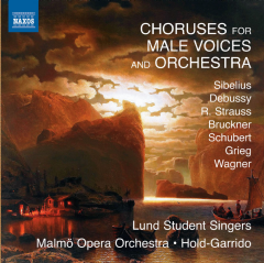 Choruses For Male Voice & Orchestra - Various Artists (CD)