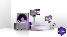 WD Purple Surveillance 3.5-inch Hard Drive - 3TB