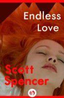 Endless Love (eBook)
