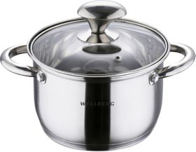Wellberg 20cm Stainless Steel Casserole with Lid