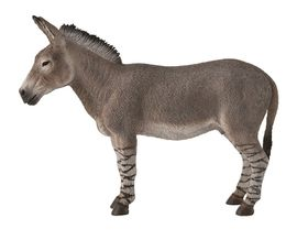 Collecta Lf African Wild Ass - Large