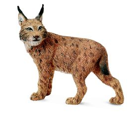 Collecta Wildlife-Lynx-L