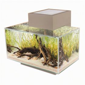 Fluval Edge 21 Aquarium 23L - LED Gloss Pewter