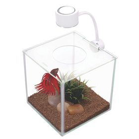 Marina Cubus Glass Betta Tank - 3.4L
