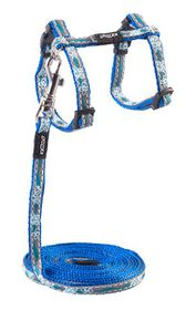 Rogz Night Cat Reflective Cat Lead & H-Harness Combination - Blue Floral Design