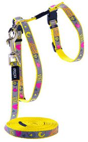 Rogz Reflecto Cat H-Harness & Lead Combination - Dayglo Bird Design