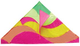Allwin Delta Kite Single Line - 133cm x 74cm