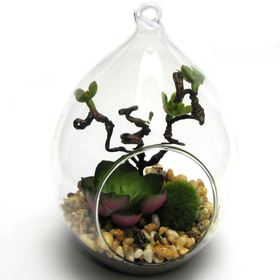 Pamper Hamper - Artificial Succulent Oval Hanging Vase - Green
