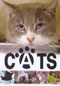 Cats-A Fun Guide To Caring.. - (Import DVD)