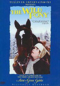Wild Pony - (Region 1 Import DVD)