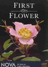First Flower - (Region 1 Import DVD)