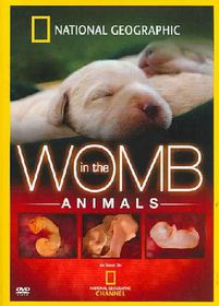 In the Womb:Animals - (Region 1 Import DVD)