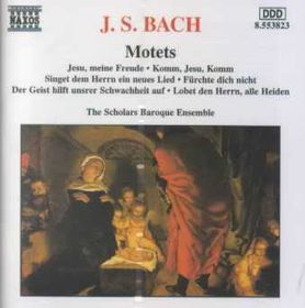 Scholars Baroque Ensemble - Motets (CD)