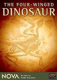 Four Winged Dinosaur - (Region 1 Import DVD)