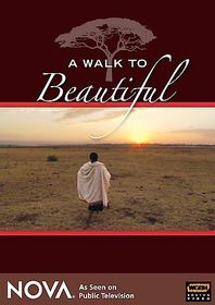 Walk to Beautiful - (Region 1 Import DVD)