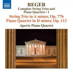 String Trios / Piano Quartets - Various Artists (CD)