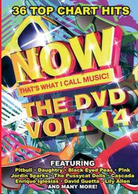 Now That's What I Call Music - Vol.14 - Various Artists (DVD)