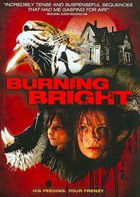 Burning Bright - (Region 1 Import DVD)