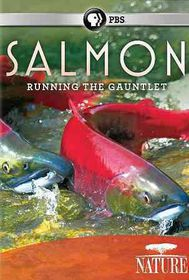 Salmon - (Region 1 Import DVD)