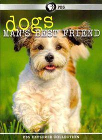 Dogs:Man's Best Friend - (Region 1 Import DVD)